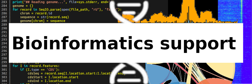 Bioinformatics Support.png