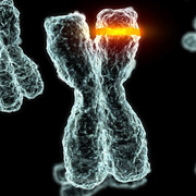 Chromosome-select-crop881x881-resize180x180.jpg