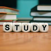 Sondage sur les ancien·ne·s étudiant·e·s de l'orientation développement et environnement du MSc GEO
