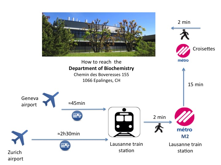 Airport map to DB.jpg