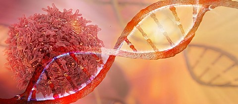 GettyImages-696241690_DNA_cancer-cell_11.14.17.jpg