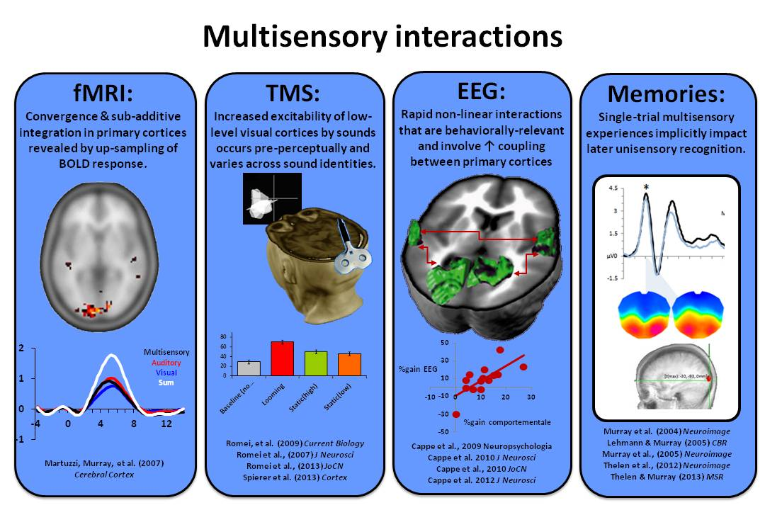 multisensory learning Multisensory learning academy school profile, performance trends and or state  ranking see how multisensory learning academy ranks with other fairview.