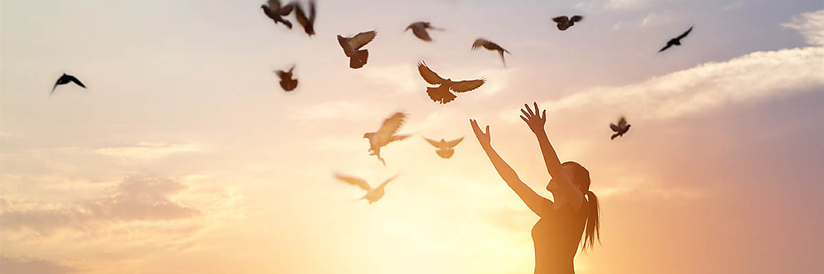 home_phase.jpg (Woman praying and free bird enjoying nature on sunset background, hope concept)
