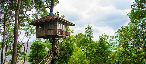 Beautiful creative handmade tree house